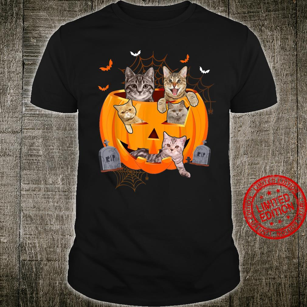 Funny Cats In Carved Pumpkin Matching Halloween Cat Shirt