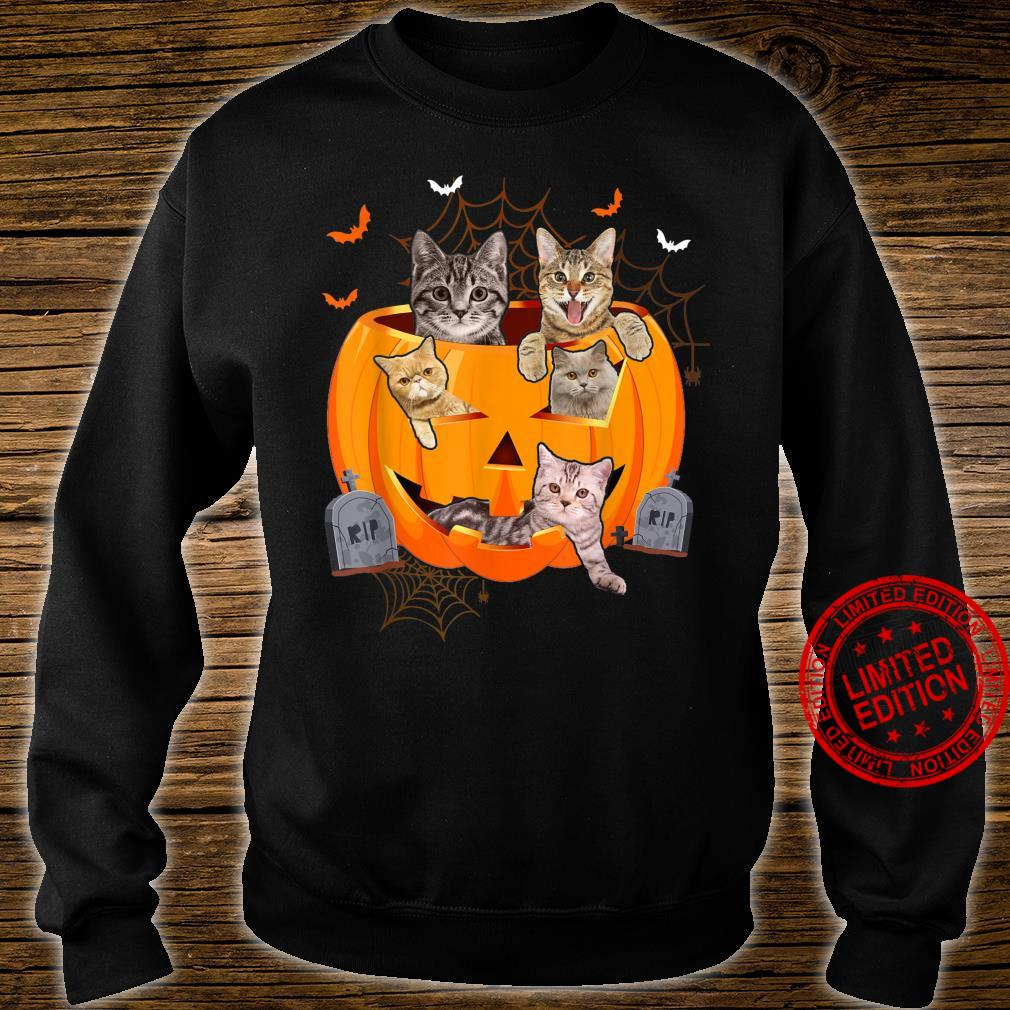 Funny Cats In Carved Pumpkin Matching Halloween Cat Shirt sweater